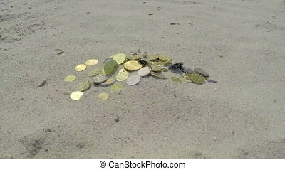 Time is Money - Wind Pushes Sand on a Pile of Coins