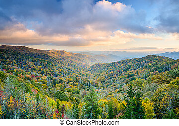 Smoky Mountains in Autumn - Smoky Mountains National Park,...