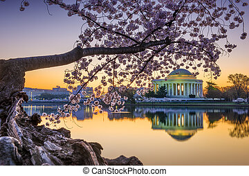 Washington DC Spring - Washington, DC at the Jefferson...