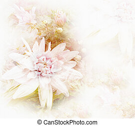 Greeting card with stylized white chrysanthemums on grunge...