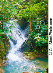 Deep forest waterfall.  - Deep forest waterfall