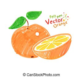 Orange fruit - Vector felt pen child drawing of orange fruit...