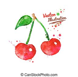 Watercolor cherries. - Vector watercolor hand drawn...