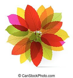 Vector Transparent Colorful Leaves