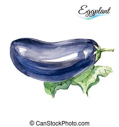 Watercolor eggplant - Watercolor vegetables eggplant...