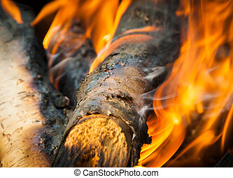 Burning fire wood and ember