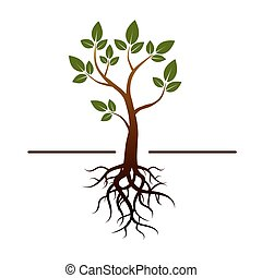 vector tree, green leafs and roots