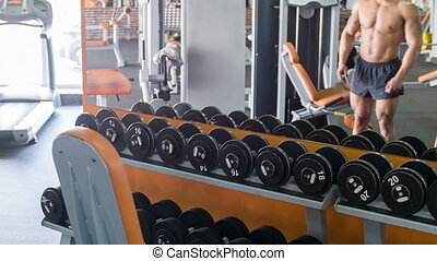 Beautiful young athlete is training in gym - Attractive...