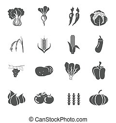 collection vegetables vector set