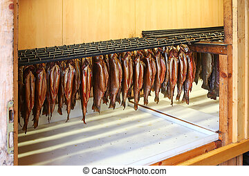 Hanging Trouts, sent to smokehouse - Hanging Trouts with...