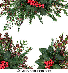 Winter Holly and Greenery Border