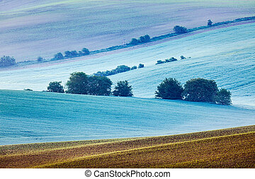 Rolling landscape of South Moravia in the morning - Rolling...