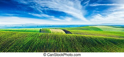 Moravian rolling landscape with trees - Panorama of Moravian...