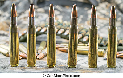 ammunitions for rifle - hollow-point ammunitions for rifle