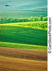 Moravian rolling landscape - European rural background -...