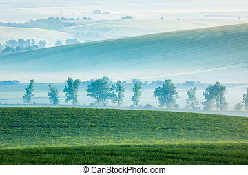 Moravian rolling landscape with trees in early morning -...