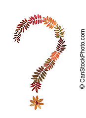 Question mark put from rowanberry sheet on white background...