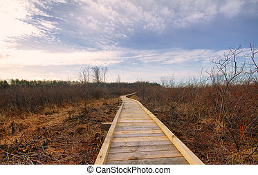 recreational tour trail road - wood flooring trail in the...