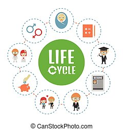 life cycle, isolaed on white background