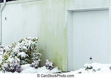 Algae house facade