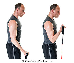 Bicep Curl - Bicep curl exercise with resistance band....
