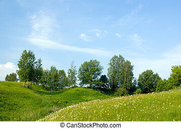 landscape with trees grass and blue sky 1 - landscape with...