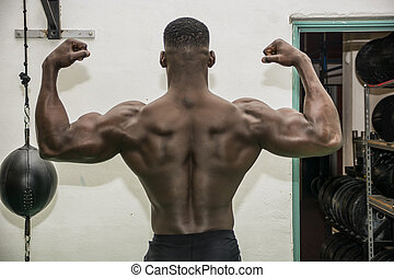 Back of hunky black male bodybuilder in gym - Back of hunky...
