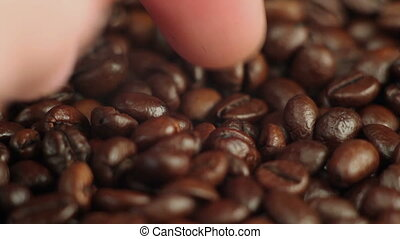 taken in hand the coffee beans - Roasted coffee beans...