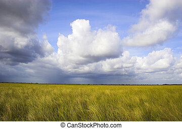 Cloudscape - White clouds on the blue sky and field of grass