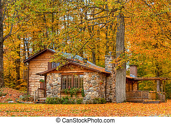 Fall Harvest - Fall leaves all around the home