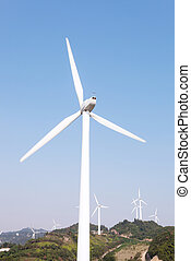 Wind Turbines with blue sky