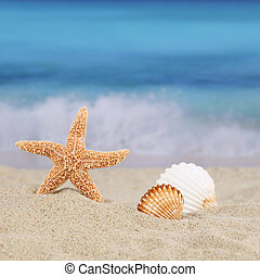 Beach scene in summer on vacation with sea and copyspace -...