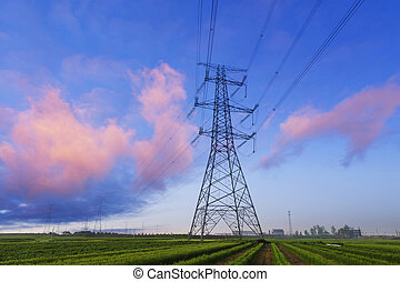 Electricity pylons in field with skyline - high voltage...
