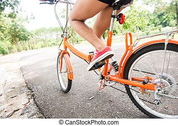 公園, 女, 自転車, 乗馬