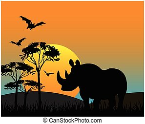 Rhinoceros in savannah - The Silhouette of the wildlife...