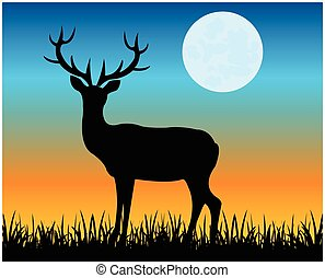 Silhouette of the deer on glade
