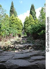 Botanical Garden in Chisinau, Republic of Moldova