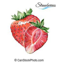 Watercolor strawberries - Watercolor fruit strawberries...