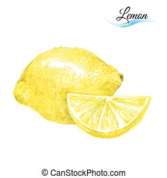 Watercolor lemon - Watercolor fruit lemon isolated on white...