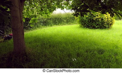 Lawnmowing in a yard in timelapse - Lawn mowing in timelapse...