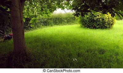 Lawnmowing in a yard in timelapse - Lawn mowing in timelapse...