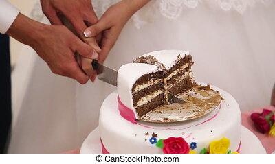 Cutting wedding cake - Bride and Groom at Wedding Reception...