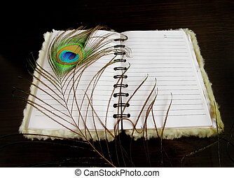 Notepad with a peacock feather