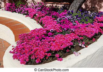 Flower display in Porto Cervo