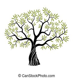 Vector olive tree - Vector Color Olive Tree with green leafs