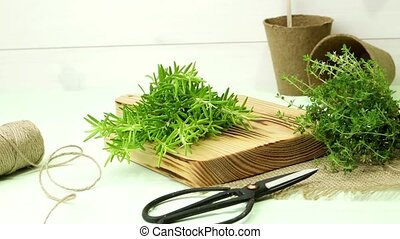 Rosemary and thyme - Bunches of rosemary and thyme with...