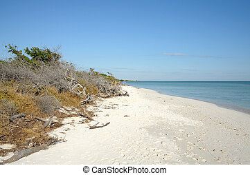 Beach at Bahia Honda Key, Florida USA