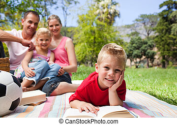 Smiling little boy reading lying on the grass while having a...