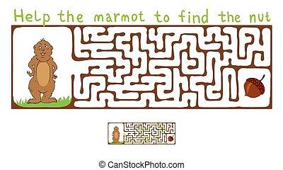vettore, labirinto, labirinto, con, marmotta, e, Nut.,