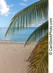 Beach on tropical island. Clear blue water, sand, clouds. -...